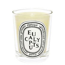 Eucalyptus Scented Candle, 190g